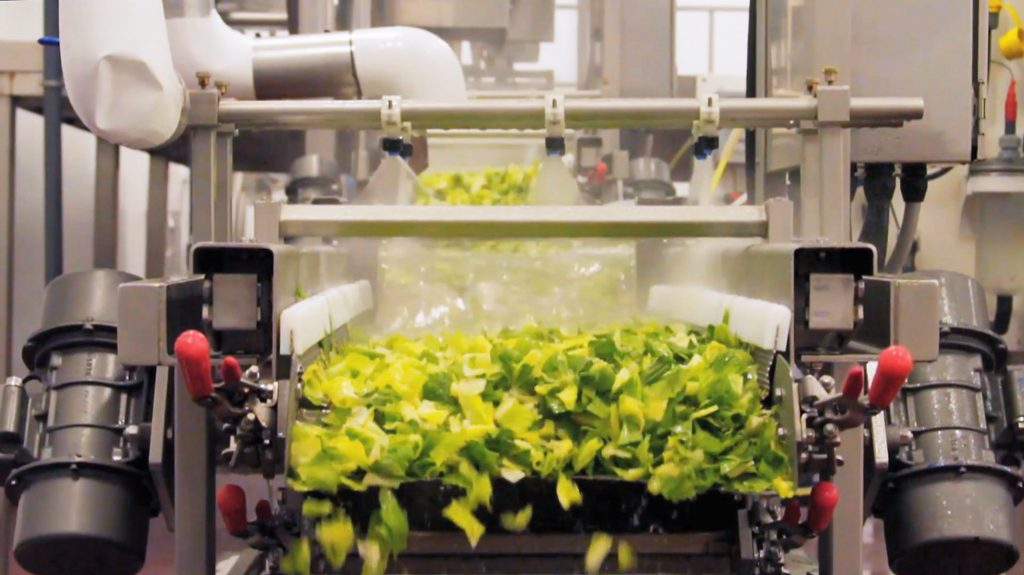 CPG-chopped lettuce processing line
